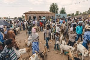 Ethiopia: Why is starvation stalking Tigray?